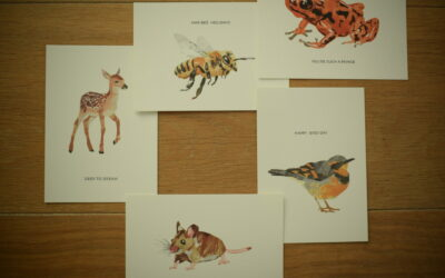 Postkaarten van een lokale kunstenaar